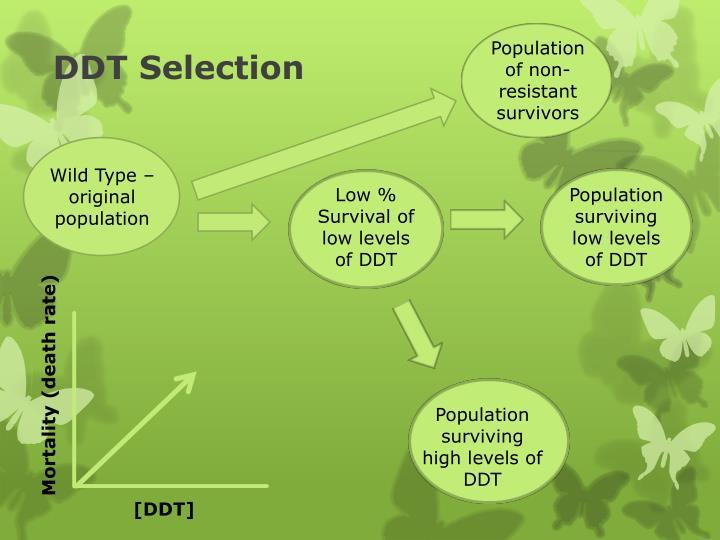 Population of non-resistant survivors