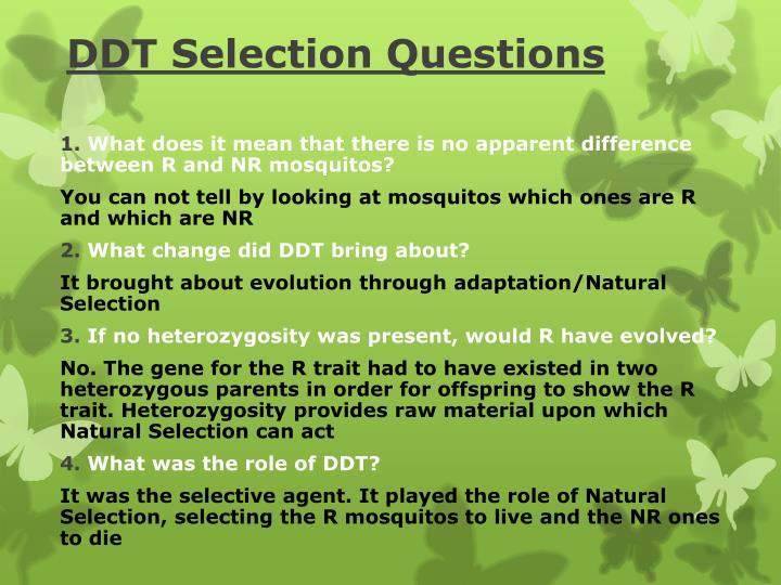 DDT Selection Questions