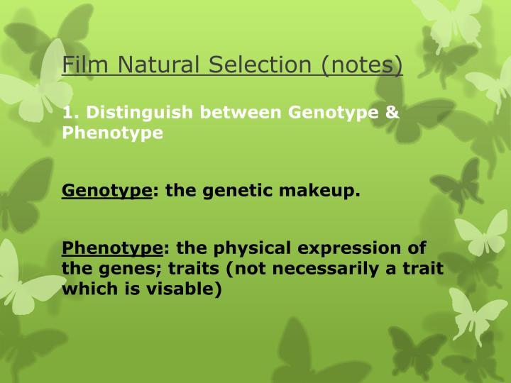 Film Natural Selection (notes)