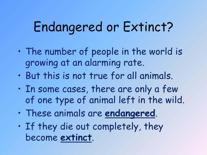 Endangered or Extinct?