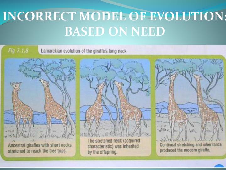 INCORRECT MODEL OF EVOLUTION: BASED ON NEED