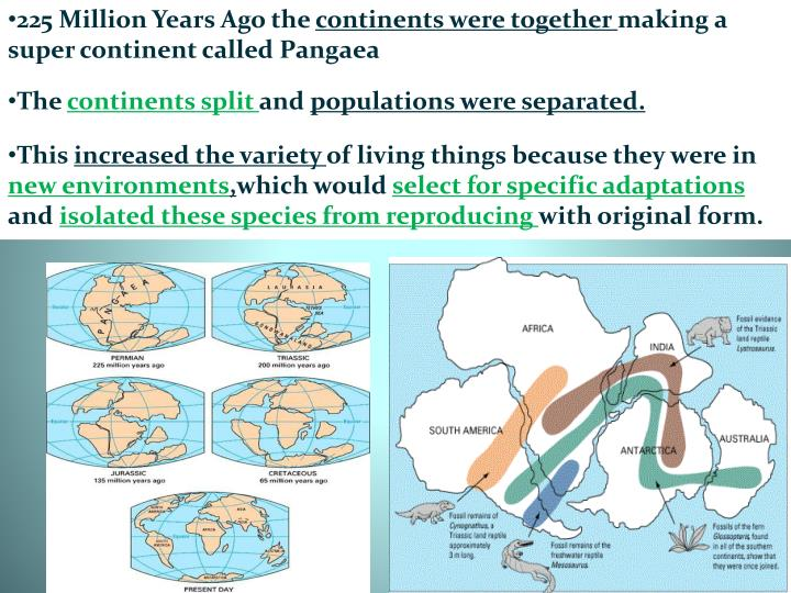 225 Million Years Ago the