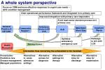 a whole system perspective