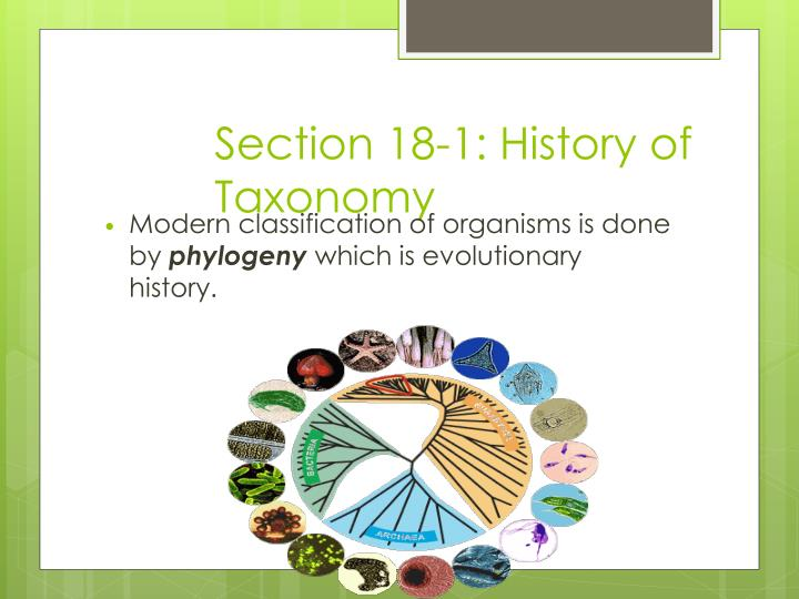 Section 18-1: History of Taxonomy