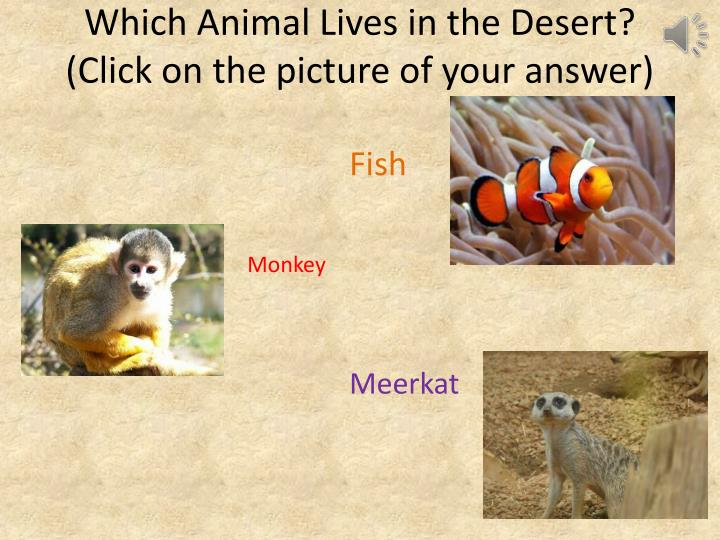 Which Animal Lives in the Desert?