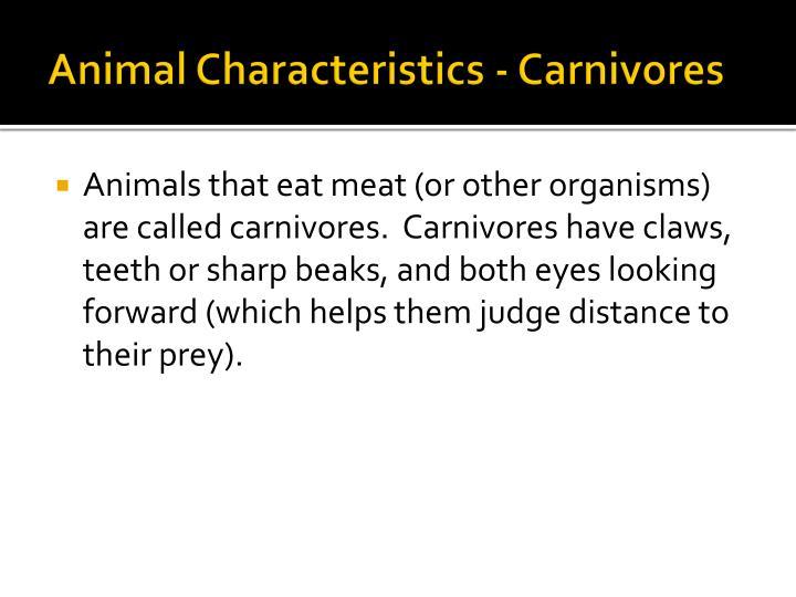 Animal Characteristics - Carnivores