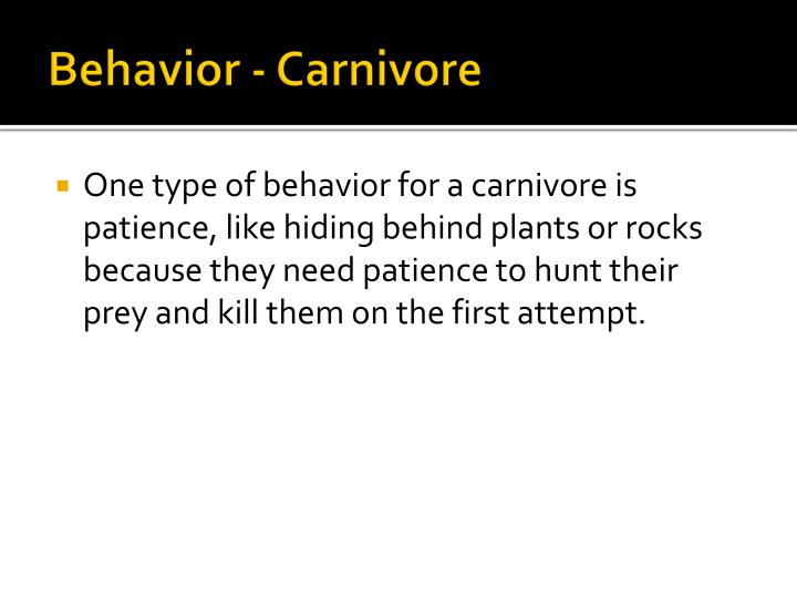 Behavior - Carnivore