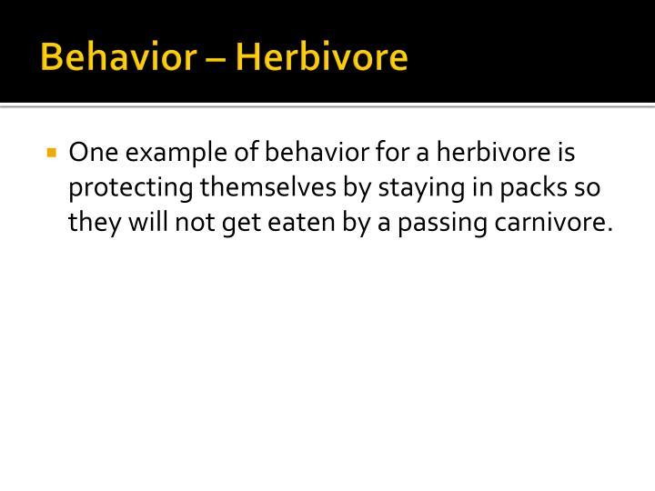 Behavior – Herbivore
