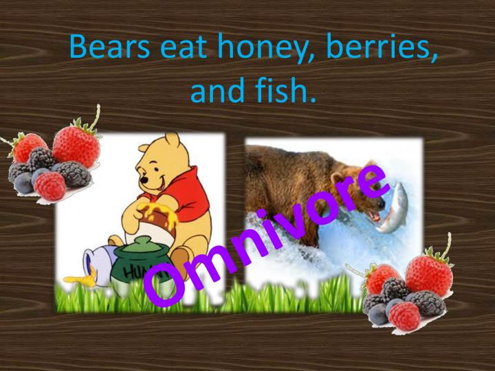 Bears eat honey, berries, and fish.