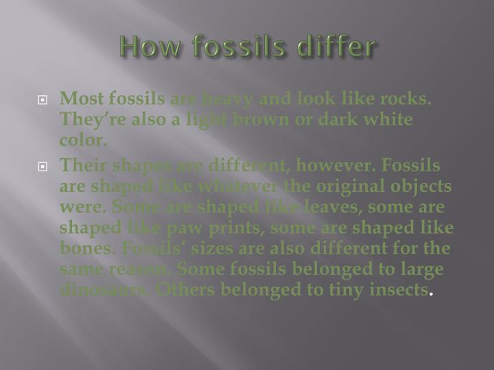 How fossils differ