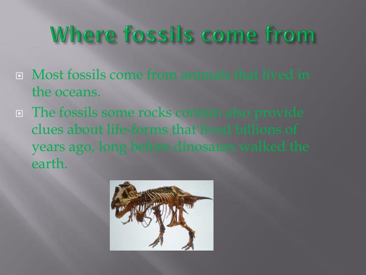 Where fossils come from