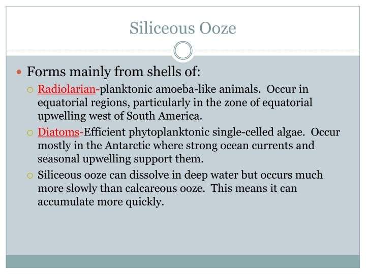 Siliceous Ooze