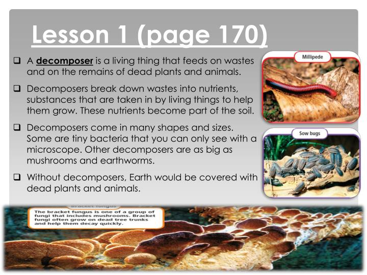 Lesson 1 (page 170)