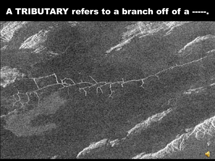 A TRIBUTARY refers to a branch off of a -----.