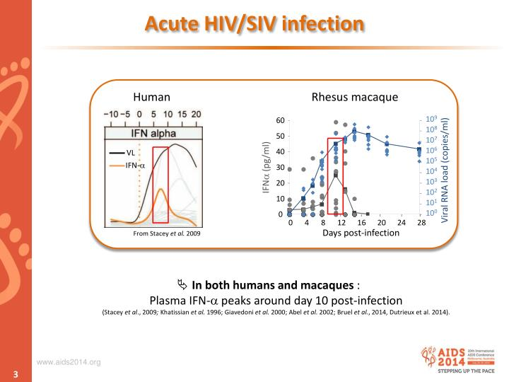 Acute HIV/SIV infection