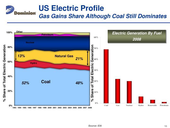 US Electric Profile