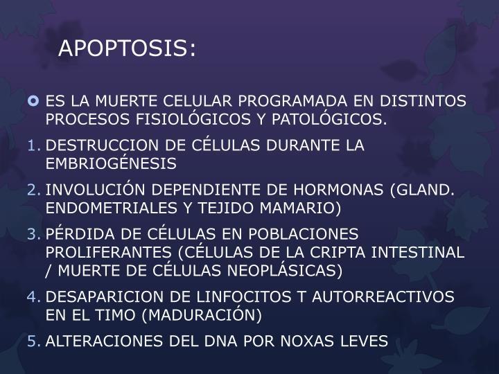 APOPTOSIS: