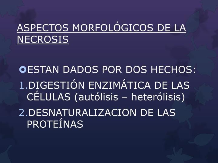 ASPECTOS MORFOLÓGICOS DE LA NECROSIS