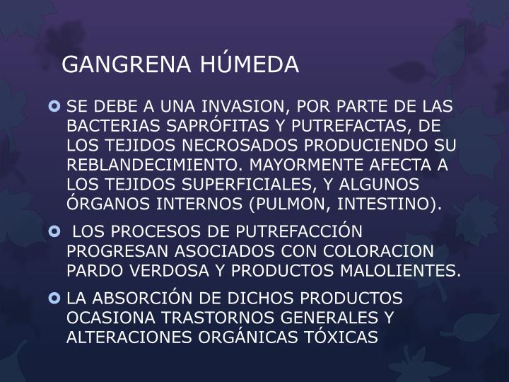 GANGRENA HÚMEDA