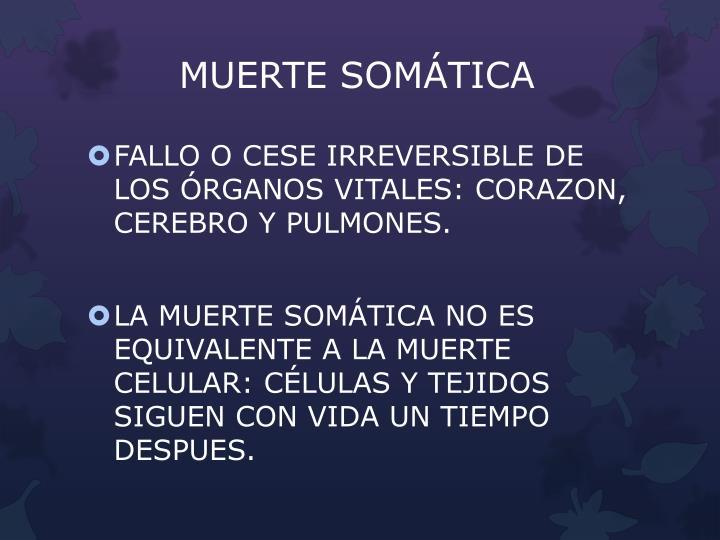 MUERTE SOMÁTICA