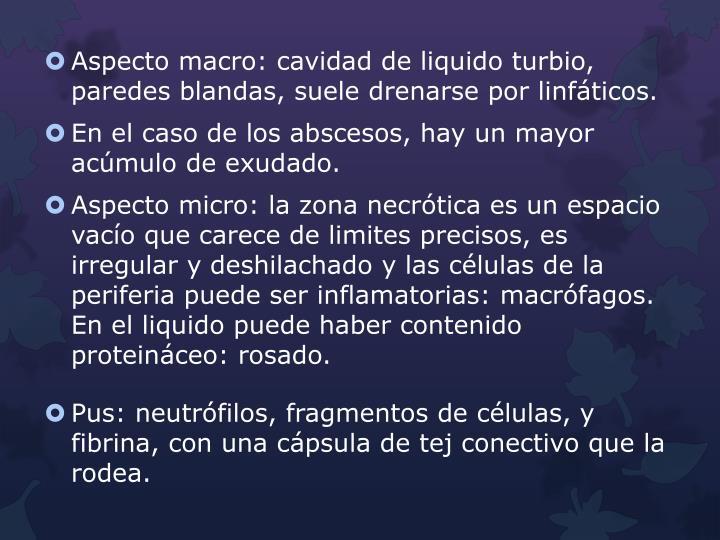 Aspecto macro: cavidad de liquido turbio, paredes blandas, suele drenarse por linfáticos.