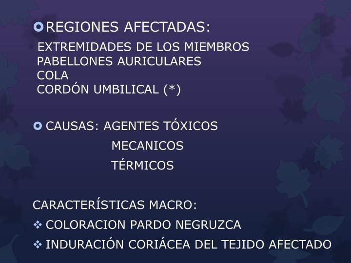 REGIONES AFECTADAS: