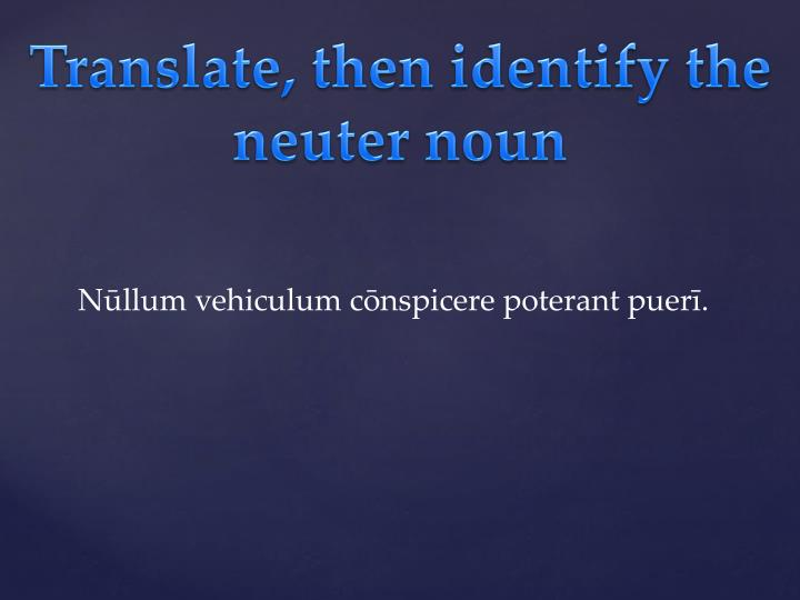 Translate, then identify the neuter noun