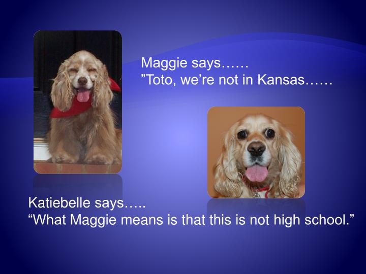 Maggie says……