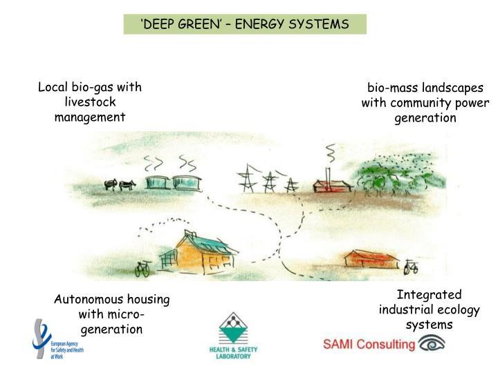 'DEEP GREEN' – ENERGY SYSTEMS