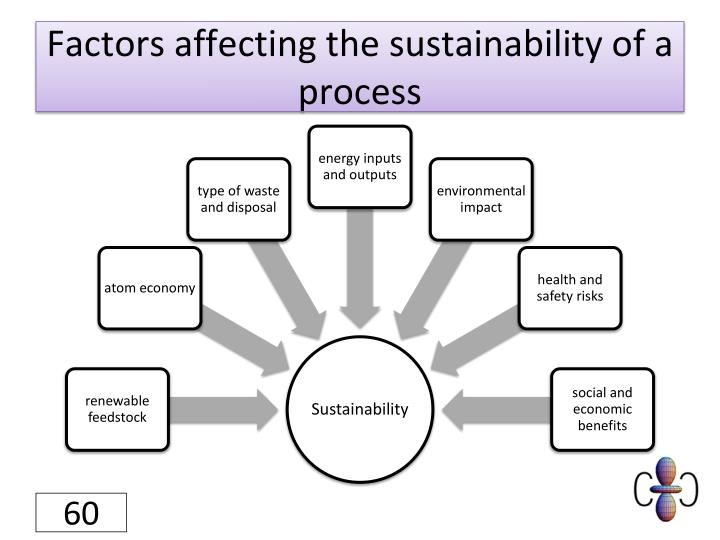 Factors affecting the sustainability of a process