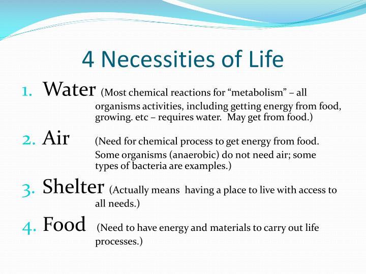 4 Necessities of Life