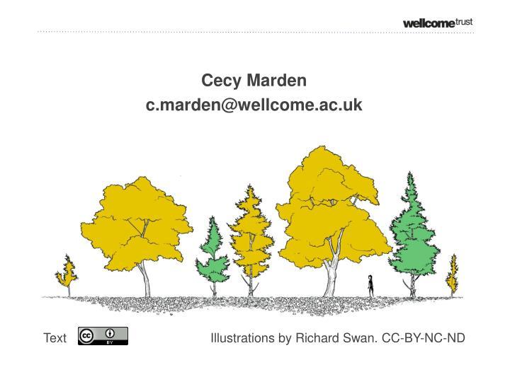 Cecy Marden