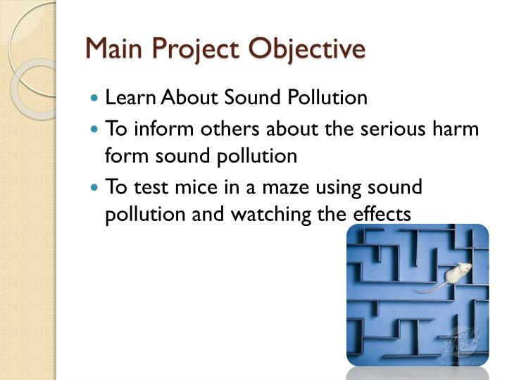 Main Project Objective
