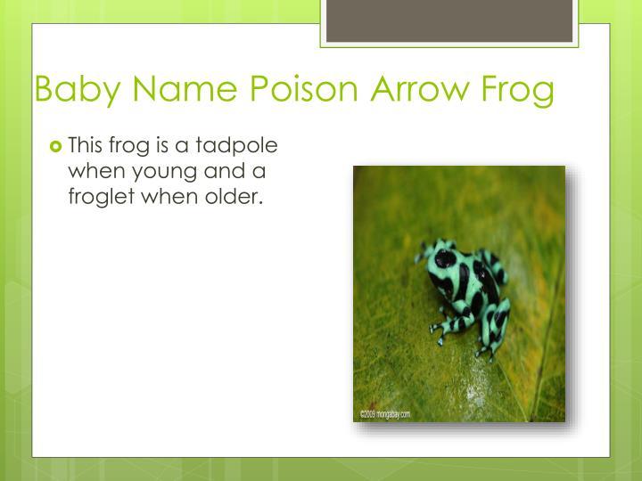 Baby Name Poison