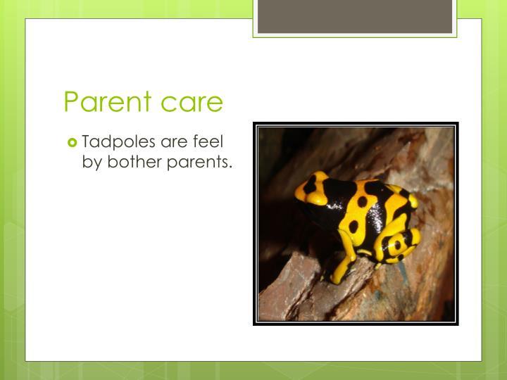 Parent care