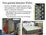 fine grained detectors fgds