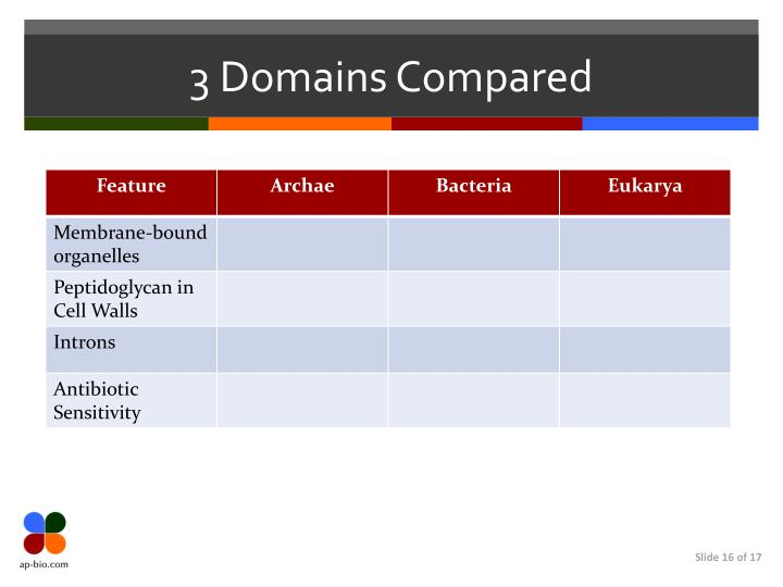 3 Domains Compared