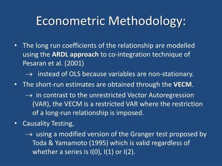 Econometric Methodology: