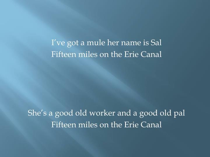 I've got a mule her name is Sal