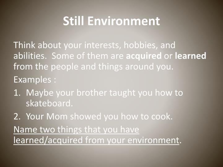 Still Environment