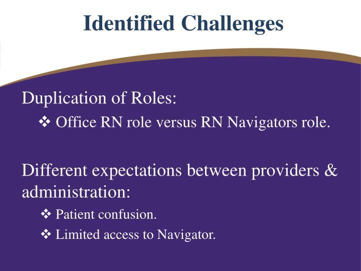 Identified Challenges