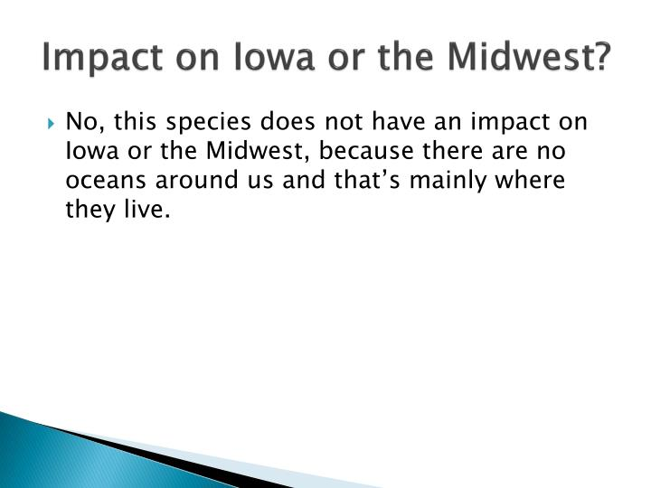 Impact on Iowa or the Midwest?