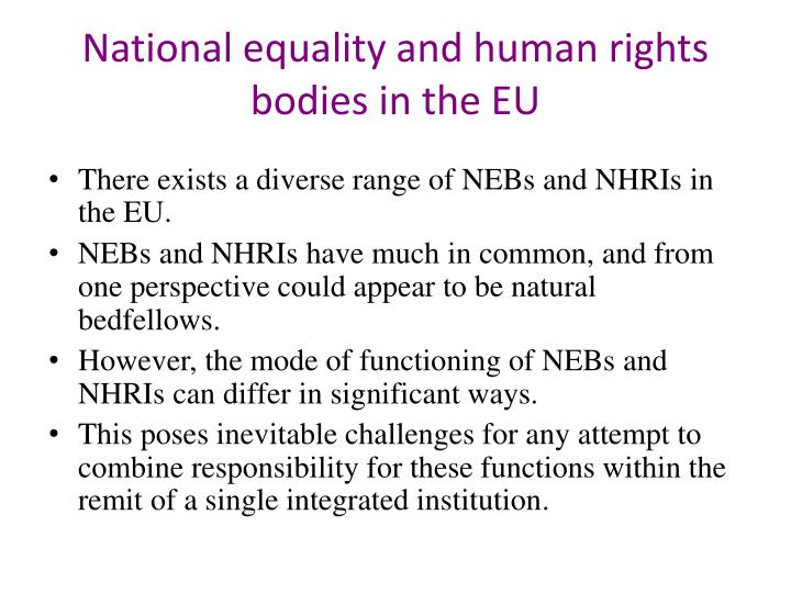 National equality and human rights bodies in the EU