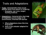 traits and adaptations