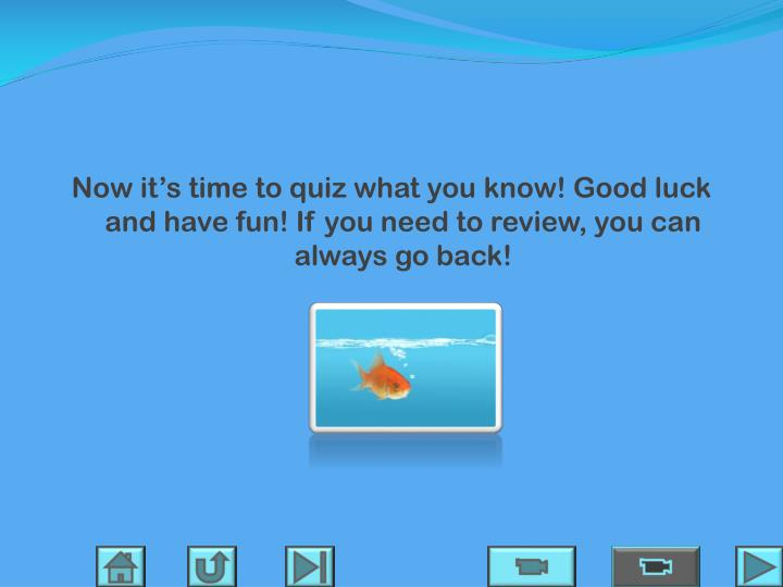 Now it's time to quiz what you know! Good luck and have fun! If you need to review, you can always go back!