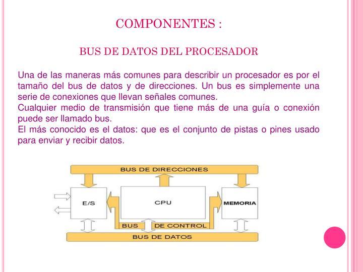 COMPONENTES :