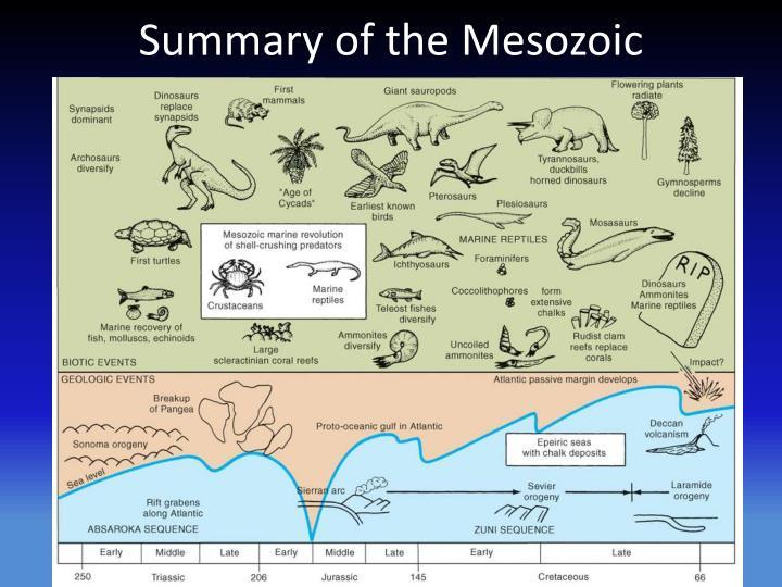 Summary of the Mesozoic