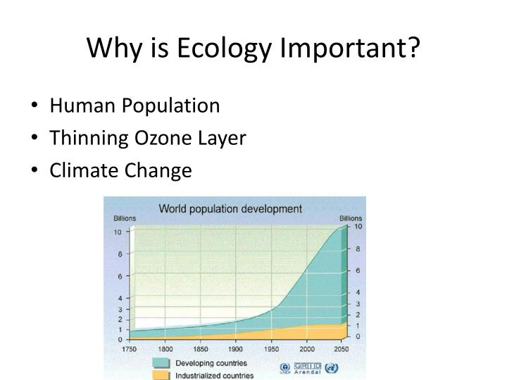 Why is Ecology Important?