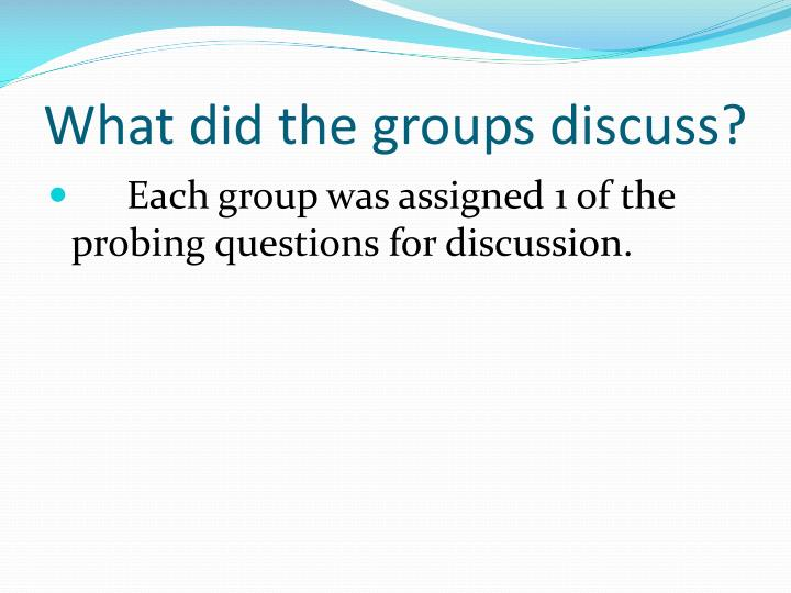 What did the groups discuss?
