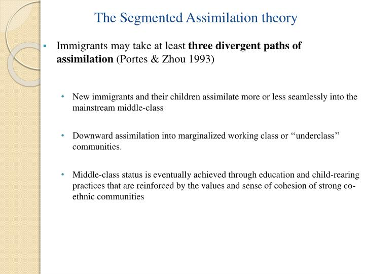 The Segmented Assimilation theory